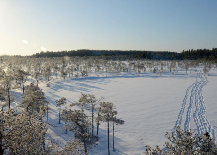 Lumikengät jalkaan ja lompsimaan talviseen luontoon